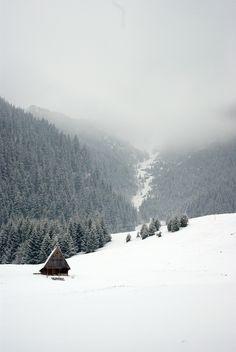 A winter's landscape