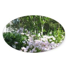 Nature Photo Flowers NewJersey  America NVN665 FUN Oval Stickers