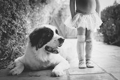 puppy, golden, retriever, mini, outdoor, session, love, fun, cute, santa monica, ideas, inspiration, animals, pets, pet, dog, dogs,  bond, owner, relationship, connection, smile, happiness, playful, saint bernard, bernard, big dog, senior, home, decor, family, gift certificate, original, unique, portrait, ballerina, tutu, www.frameyourpet.co  black-white-photo-kid-and-dog-fine-art.jpg
