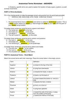Ohio state university application essay