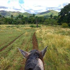 A cavallo nelle lande di Trinidad #trinidad #cubanos #igerscuba #cuba2015 #cuba #caraibi #horsebackriding #ig_cuba #picoftheday #photooftheday #photoshoot #worldunion #worldcaptures #loves_cultures #instagood #instapassport #instatraveling #nature #naturelovers #nature_perfection #horse #nofilter #natureporn #naturephotography #travelgram #travelphotography #carribean #igworldclub #horseback