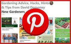 pinterest Climbing Shade Plants, Climbers For Shade, Shade Garden, Gardening Tips, Shades, Sunnies, Eye Shadows, Draping