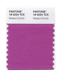 Pantone Color of the Year.  Radiant orchid.
