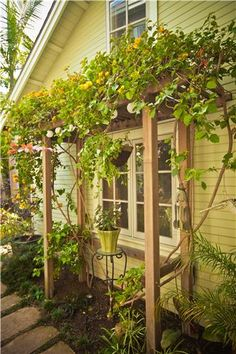 Mini pergola--over the water spout in the backyard?