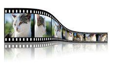 Fotolia, Un Mundo De Imágenes Disponibles Para Tu Web Y Proyecto #tecnologia