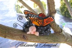Anne Geddes style sugar baby butterfly cake topper