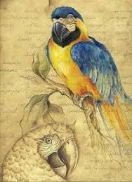 Speedball Pen and Ink with Cobra Water Mixable Oil Wet-on-Wet and Washes. Digital Art Photography, Paint Pens, Tole Painting, Learn To Paint, Bird Art, Childrens Books, Birds, Hand Painted, Color Wheels