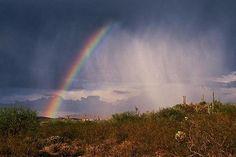 Desert Rainbow 2