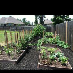 I love boxed gardens!