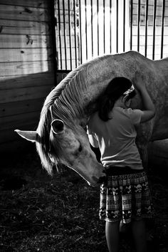 Horse hug on Flickr.