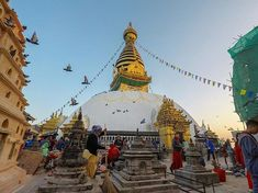 Get official travel information about where to go and what to see to help you plan your next trip to Nepal. Travel Information, Where To Go, Nepal, Places To See, Fair Grounds, World, The World