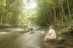 Fly fishing a pond for trout fly fishing pinterest for Smoky mountain cabins with fishing ponds