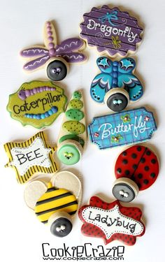 CookieCrazie: Buggin' Out Cookie Collection with tutorial (2-D Bug Cookies)