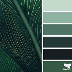 { color nature } image via: The post Color Nature appeared first on Design Seeds. Monochromatic Color Scheme, Colour Pallette, Colour Schemes, Color Combos, Color Patterns, Design Seeds, Design Industrial, Make Color, Colour Board
