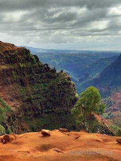 Hike into Waimea Canyon for one of a kind views.