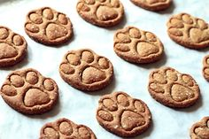 Dog biscuits: Tuna wholegrain paws – Fashion Kitchen - Cats and Dogs House 1200 Calorie Diet, 1200 Calories, Puppy Cake, Dog Biscuits, Homemade Dog Treats, Cheesecake, Dog Food Recipes, Food And Drink, Yummy Food