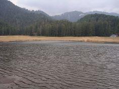 Tourist Places to Visit in Dalhousie are- Khajjiar Lake, Kalatop Khajjiar Sanctuary, Chamunda Devi Temple, Bhuri Singh Museum. Dalhousie Sightseeing Attraction. For more details visit us www.hotelpearldalhousie.com