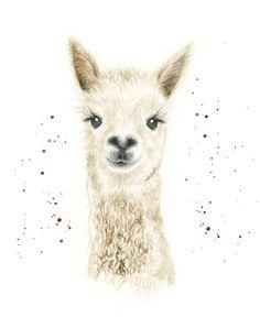 llama, alpaca wall art, llama art, llama print, llama alpaca, alpaca print, cute alpaca, cute animals art, farm animal art, zoo animal print by LianneMarieArt on Etsy