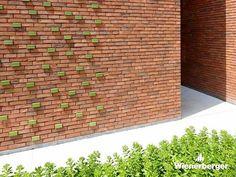 Brick Green Brick