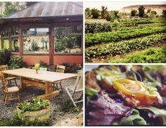 From the Farm to the Table- Hell's Backbone Grill in Boulder, Utah! #QBlog #HealthyEating #HealthyDining