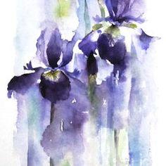 Original flower paintings rachel mcnaughton