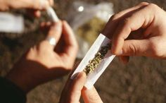 Does Weekly Marijuana Use By Teens Really Cause a Drop in IQ?