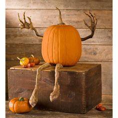 Halloween Fotos, Outdoor Halloween, Holidays Halloween, Halloween Crafts, Halloween Wishes, Halloween Scene, Halloween Displays, Halloween Season, Faux Pumpkins