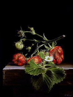Wijnand Warendorf | OIL | Strawberries 2