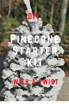 DIY Pinecone Starter Kit - Just wait until you see how beautiful these pinecone starter kits are! You won't want to burn them! And they smell good too! Create And Craft, Pinecone, Smell Good, Starter Kit, How Beautiful, Crafty, Christmas Ornaments, Holiday Decor, Diy