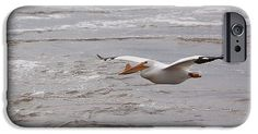 American White Pelican IPhone 6s Case featuring the photograph White Pelican…