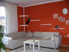 ber ideen zu katzen kletterwand auf pinterest k tzchen katzen und katze. Black Bedroom Furniture Sets. Home Design Ideas