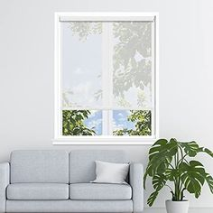 Amazon.com: Persilux Solar Screen Roller Shades Light Filtering View Through Smooth Operation Window Blinds (35''W x 72''H, White) Glare Control Easy Installtion Blinds for Window Treatment for Sunroom: Kitchen & Dining Window Roller Shades, Roller Blinds, Sunroom Kitchen, Kitchen Dining, Window Blinds, Blinds For Windows, Glass Door Coverings, Solar Screens, Motorized Shades