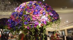 Flower Installation by Daniel Ost for the Central Floral Extravaganza in Central Chidlom Department Store