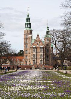 Copenhagen - Crocus Bloom Rosenborg Castle