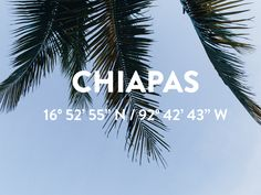 The Citizenry | Making Mexico // The Video   – The Citizenry | CHIAPAS