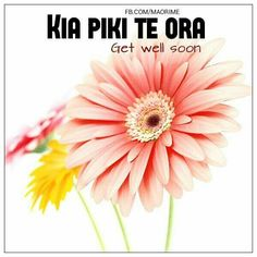 Get well soon Get Well Soon, School Resources, Archetypes, Craft Work, Early Childhood, New Zealand, Cancer, Teaching, Cook Islands