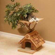 Casa na árvore pra um Gatinho!