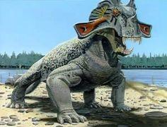 Estemmenosuchus a cool Permian synapsid!