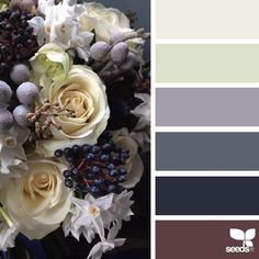 «today's inspiration image for { flora palette } is by @fairynuffflower ... thank you, Steph, for another *incredible* #SeedsColor image share <3»