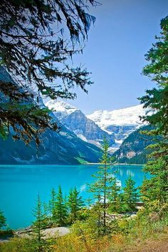 Pinspiration - 7 Beautiful Lakes Lake Louise, Banff National Park, Canada - This weeks Travel PinspirationLake Louise, Banff National Park, Canada - This weeks Travel Pinspiration Banff National Park Canada, National Parks, Lake Louise Banff, Parks Canada, Beautiful Places To Travel, Canada Travel, Nature Pictures, Belle Photo, Vacation Spots