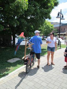 """Everybody bikes in Bloomington. Indiana, Bike, Bicycle, Bicycles"