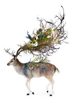 of mysticism and artillery forest stag by EllenJewettPrintShop