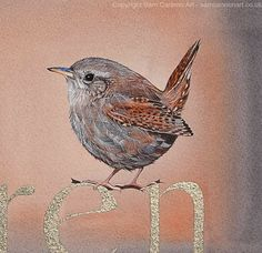 Sam Cannon, Vintage World Maps, Bird, Animals, Animales, Animaux, Birds, Animal, Animais