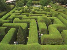 8. Эшкомб Мейз (Виктория, Австралия) Самый старый растительный лабиринт в южном полушарии состоит из