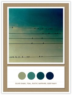 rustic teal | ... › Color Card 067: Olive Khaki, Teal, Rustic Sapphire, Deep Navy