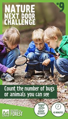 There's more bugs and animals at your park than you think, you just need to know where to look. Forests and parks are home to creatures of all shapes and sizes. Even after a tree dies and falls down it becomes a habitat for many. Encourage kids to look under a fallen tree or rock and see just how many bugs they can count. Use a magnifying glass to inspect moss or fungi and you might even see small animals living there. Find other missions when you explore the Nature Next Door Challenge.