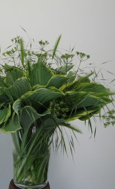 Green bouquet of hostas ✧ flower arrangements ✧ flowers ✧ green flowers Easter Flower Arrangements, Flower Vases, Floral Arrangements, Deco Floral, Arte Floral, Ikebana, Cactus Y Suculentas, Decoration Table, Green Flowers
