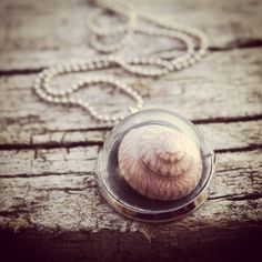 Spiral Shell Necklace #nostalgems #necklace #shell #beachcombing #found #jewelry #jewellery #handmadejewellery #handmadejewelry #newzealand