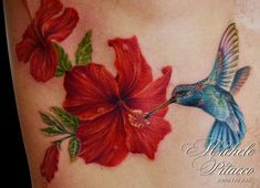 Tattoos - hummingbird with hibisus - 108228