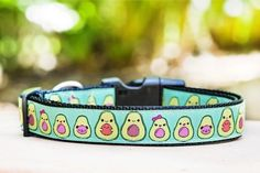 Avocado Dog Collar / XS-XL